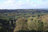Countryside At Hindhead. Surrey. UK