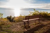 Autumn A Park Bench In Hungary At The Lake Balaton