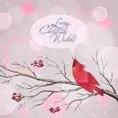 Christmas Vector Snowy Rowan Berries Bird Card