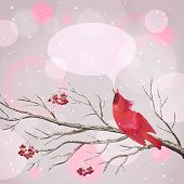 Christmas Vector Snowy Rowan Berries Bird Card