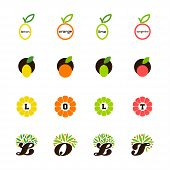 Lemon, Orange, Lime, Tangerine, Grapefruit. Set Of Design Elements