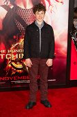 LOS ANGELES, CA - NOVEMBER 18: Actor Nolan Gould arrives at the premiere of The Hunger Games: Catchi