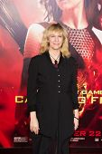 LOS ANGELES, CA - NOVEMBER 18: Actress Amanda Plummer arrives at the premiere of The Hunger Games: C