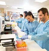 Hospital lab preparing samples for referral