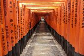 Tunnel Of Torii Gates At Fushimi Inari Shrine In Kyoto