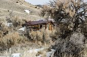 Cabins Nearly Hidden by Sagebrush