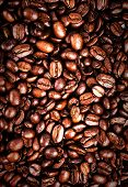 Coffee Beans  Background  Or Texture. Roasted Shiny Coffee Beans.