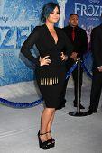 LOS ANGELES - NOV 19:  Demi Lovato_ at the