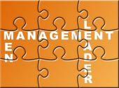 Management Puzzle