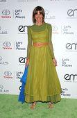 LOS ANGELES - OCT 19:  Wendie Malick arrives to