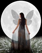 stock photo of silver-hair  - Fairy in front of a Moon - JPG