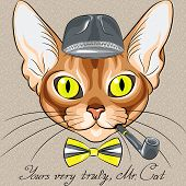 stock photo of tobacco-pipe  - vector color sketch of the red cartoon hipster cat Abyssinian breed with flashing amber eyes in a gray hat bow tie with tobacco pipe - JPG