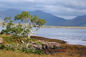 Isle Of Mull - Landscape