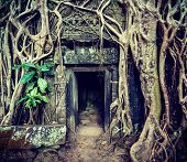 Vintage retro effect filtered hipster style travel image of ancient stone door and tree roots, Ta Pr