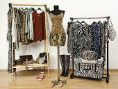 pic of cheetah  - Dressing closet with animal print clothes arranged on hangers - JPG