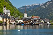 Swan in lake against Hallstatt village on  Hallst�?�?�?�¤tter See in Austrian alps. Salzkammergut region, Austria