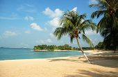 image of beach holiday  - beach at sentosa - JPG
