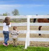 Pre-teen Girl And Baby Boy On The A White Picket Fence Beside The Horse