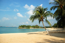 picture of beach holiday  - beach at sentosa - JPG