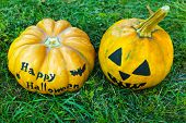 Halloween pumpkins on green grass background, outdoors