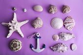 Sea souvenirs on purple background