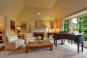image of grand piano  - Luxury family room with high vaulted ceiling and large french window - JPG