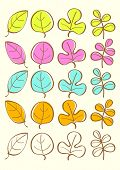Color vector autumn leaves vector