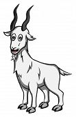 stock photo of capricorn  - capricorn zodiac Editable  - JPG