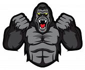 gorilla angry