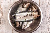 Prepared Sardines For Cooking