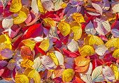 Colorful Background Made Of Autumn Leaves.