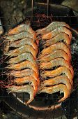 Grilled Prawns On The Grill