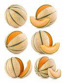 set of 6 cantaloupe melon images