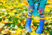 Close up of a little girl in colorful clothes and blue boots outdoors at beautiful autumn park