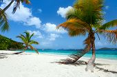 Beautiful tropical beach with palm trees, white sand, turquoise ocean water and blue sky on St John, US Virgin Islands in Caribbean