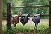 Three Saddles