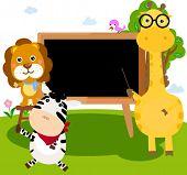 Animals and blackboard