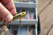 Fishing Lure Selection