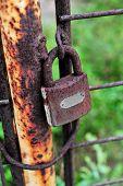 Rusty Lock On Rusty Iron Gate