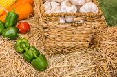 foto of sag  - close up shot of garlic pumpkin and chili in basket image - JPG