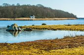 picture of gazebo  - White small gazebo by the waters edge in early spring - JPG