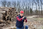 image of ax  - Portrait of young lumberjack with ax beside cut trunks in forest - JPG
