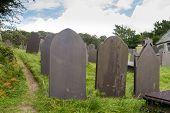 foto of bereavement  - Backs of gravestones made from dark blue slate - JPG