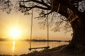 picture of lonely  - lone swing at river side and sunset  - JPG