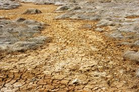stock photo of drought  - Hay on drought land amazing arid and cracked ground climate change made agriculture plantation have to reduct in summer it very hot warming is global problem cause by greenhouse effect - JPG