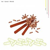 stock photo of iron star  - Healthcare Concept Illustration of Dried Star Anise and Cinnamon Sticks with Iron Calcium and Minerals Essential Nutrient for Life - JPG