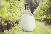 pic of orchard  - Woman in a white dress in the orchard - JPG