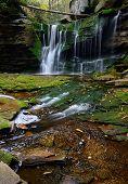 picture of virginia  - Elakala Falls in Blackwater Falls State Park - JPG