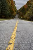 image of tree lined street  - Empty asphalt road with yellow line in Autumn - JPG