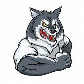 image of white wolf  - Wolf mascot - JPG